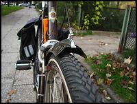 images/stories/20101005_HolenderDzwonekDziob/640_img_1436_nosek.jpg