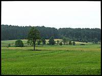 images/stories/20110709_Budziska/800_IMG_2746_Jezioro_v1.JPG