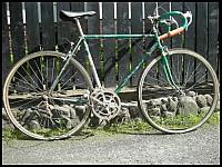 images/stories/20111121_RoweryRometKatalog/JaguarSpecial/800_RometJaguarSpecial_Zielony2.jpg