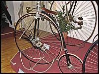 images/stories/20120501_HolandiaVelorama/640_IMG_5685_BicyklNietypowyNaped_v1.JPG