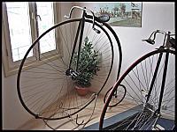 images/stories/20120501_HolandiaVelorama/640_IMG_5698_Bicykl_v1.JPG