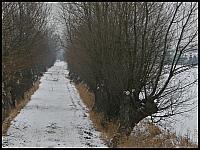 images/stories/20130127_WyspaSobieszewska/640_IMG_8325_Wierzbowo_v1.JPG
