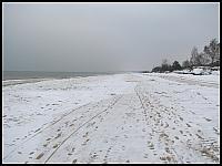 images/stories/20130127_WyspaSobieszewska/640_IMG_8347_GorkiWschodnie_v1.JPG