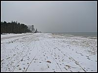 images/stories/20130127_WyspaSobieszewska/640_IMG_8350_Gorkiwschodnie_v1.JPG