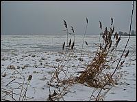 images/stories/20130127_WyspaSobieszewska/640_IMG_8432_Wisla_v1.JPG