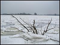 images/stories/20130127_WyspaSobieszewska/640_IMG_8451_Krzaczor_v1.JPG